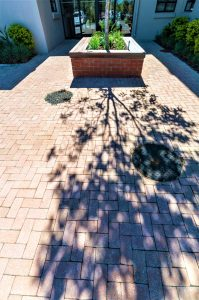 Muddy Polished Paver to entrance at Pinelands Grove